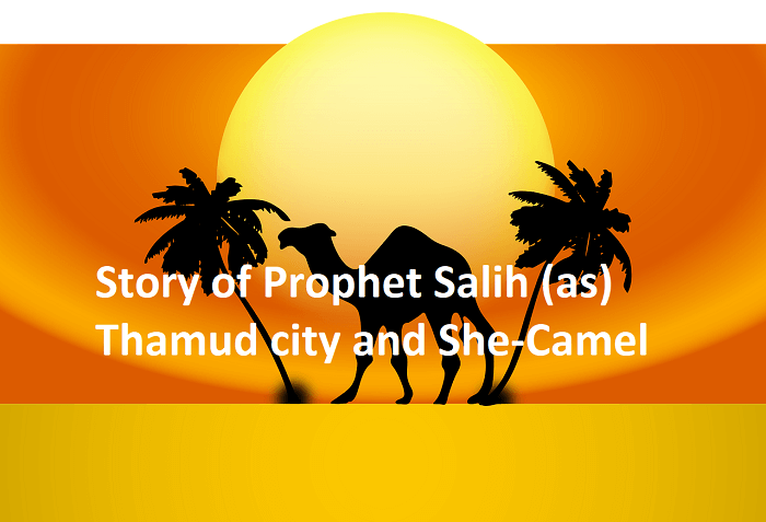 Story-of-Prophet-Salih-Saleh-Thamud-city-and-She-Camel
